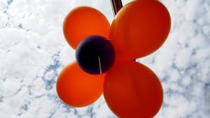 Воздушные шарики декор-дизайн, солнце, цветы